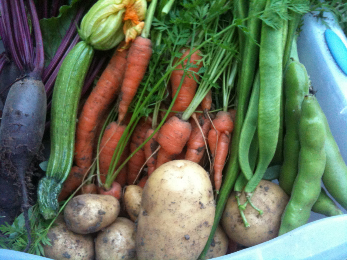 Vegetables are a verstile ingredient that can be prepared and eaten in many ways.