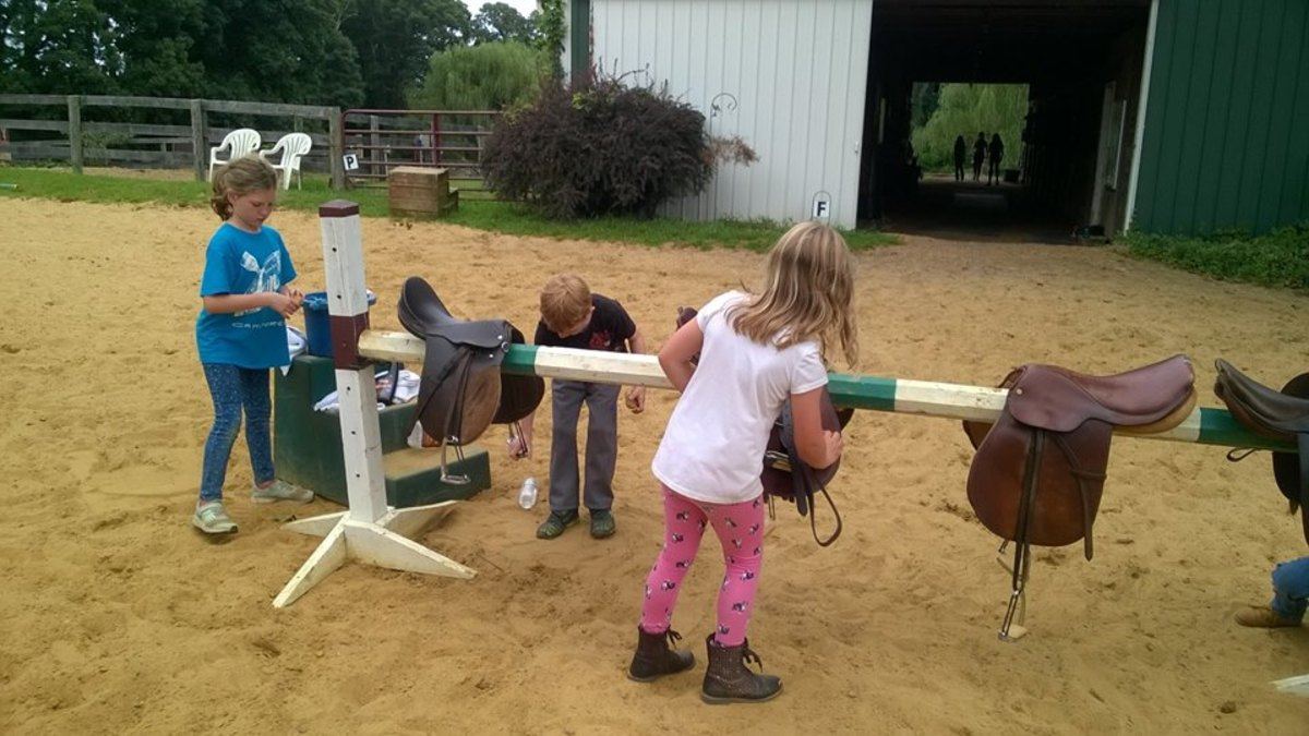 An Unmounted Horsemanship Lesson for Beginners
