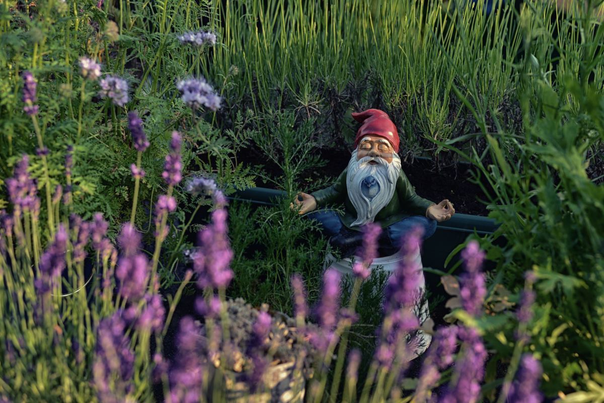 10 Things You Can Do to Make Your Gnomes Happy