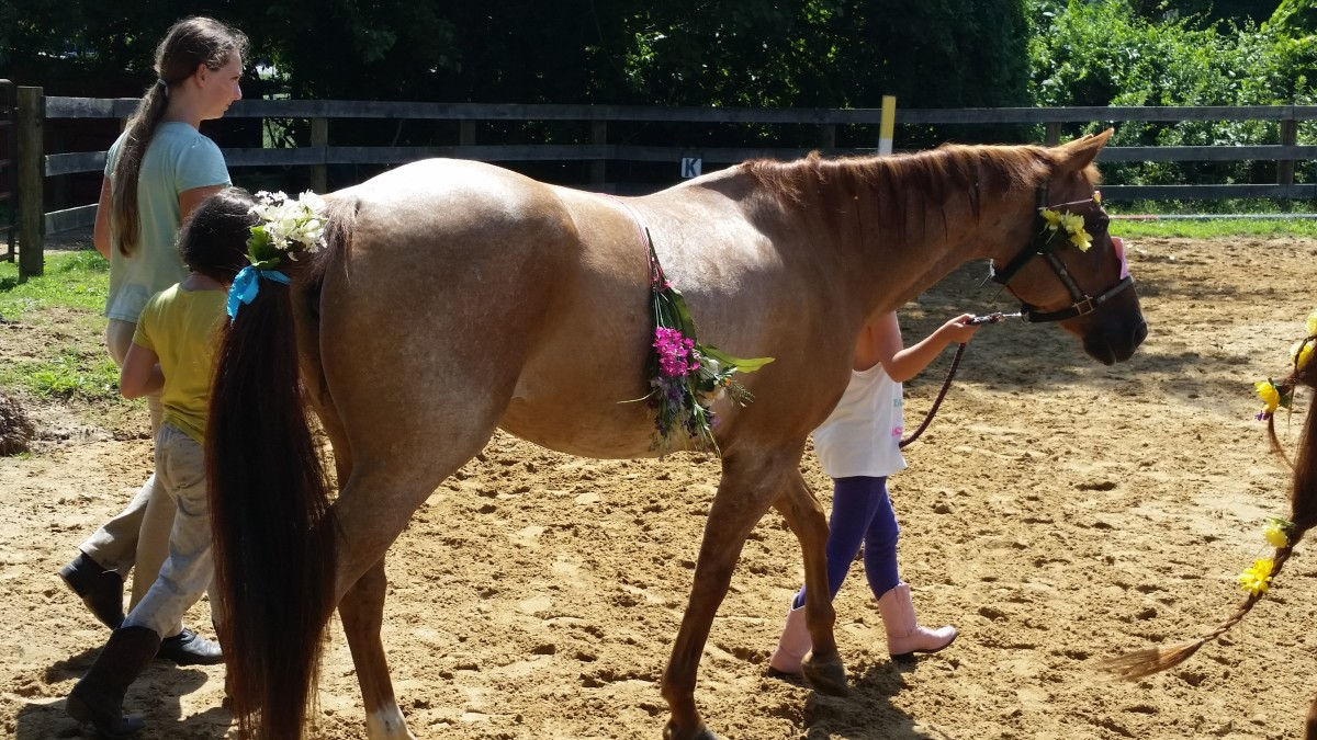 Horse Safety Advice From a TBI Patient