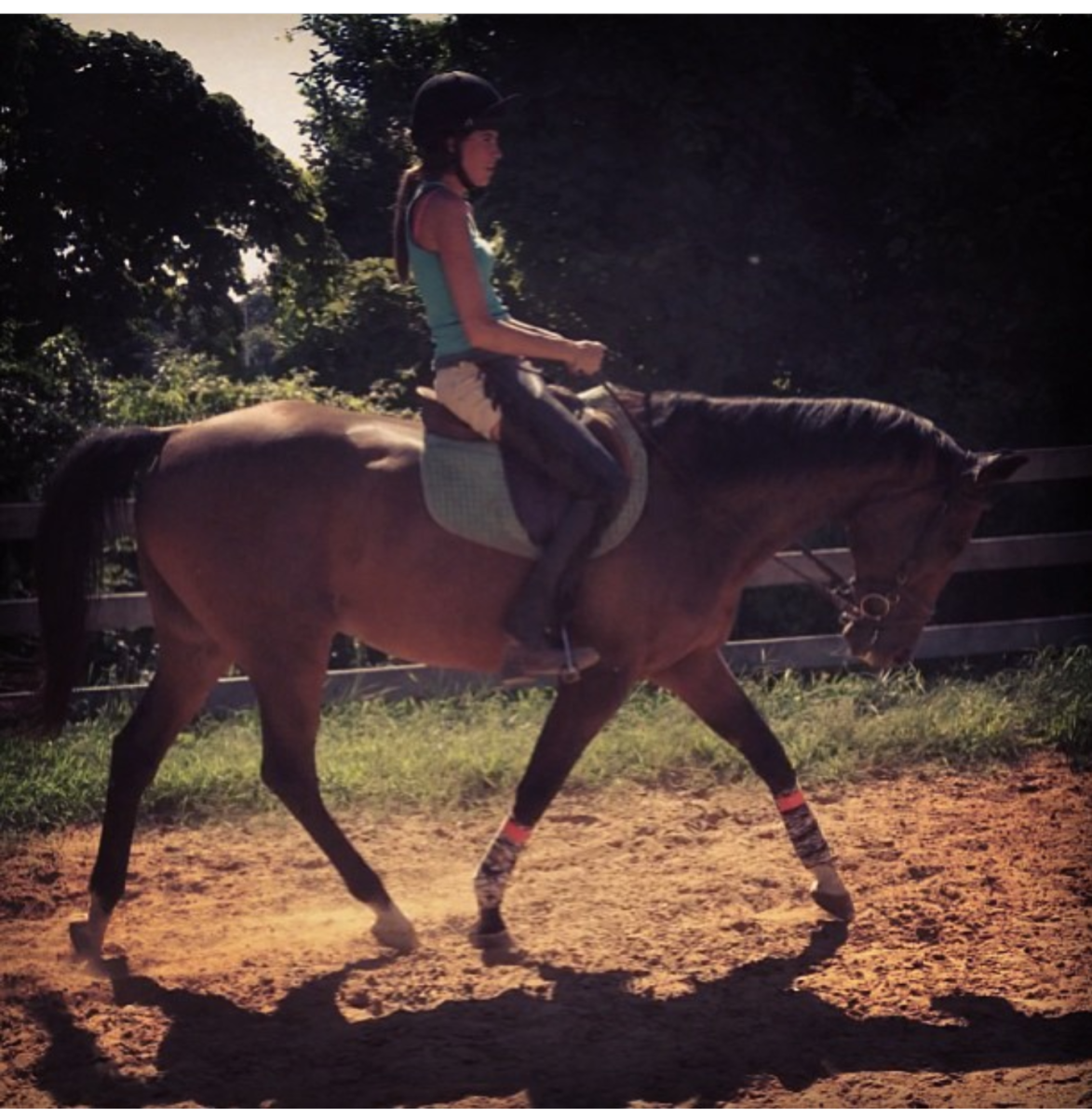 This is my main man, Kemerton, who is now retired. My story with him is the classic example of buying the horse I saw myself competing on. Luckily we had help of good trainers and lived happily everafter!