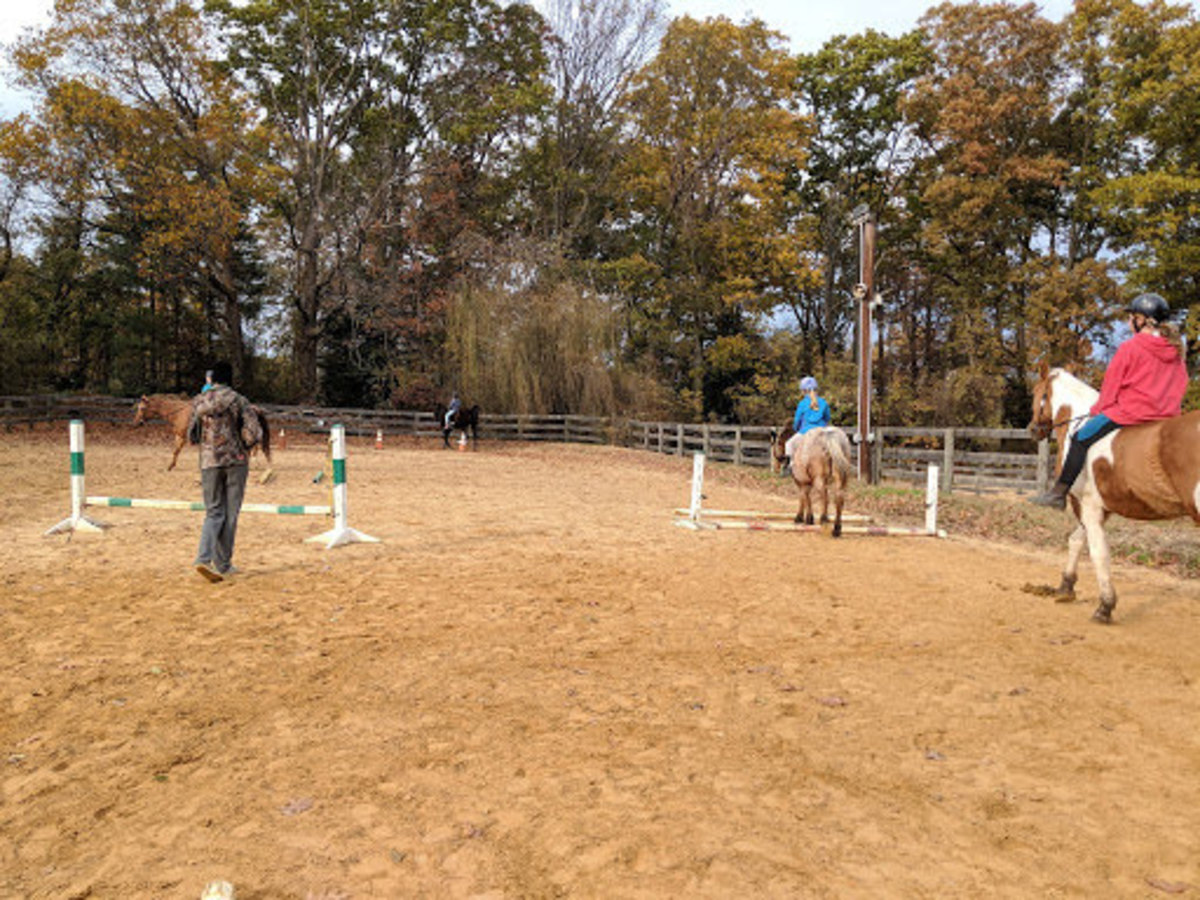 "Horseback Riding: How to Be a Great ""Barn Parent"""