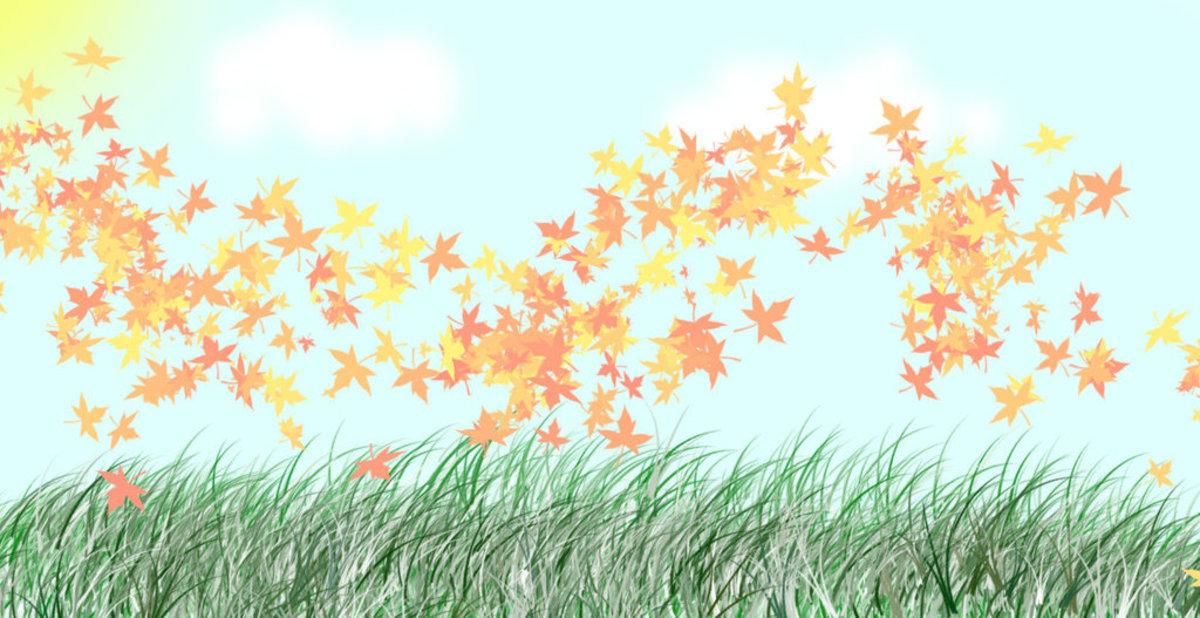 Bursting Leaves: A Poem for Autumn