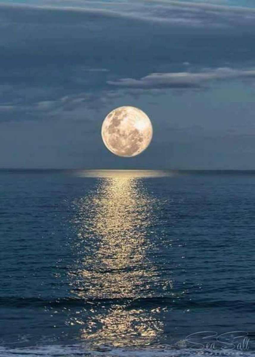 The Bashful Moon