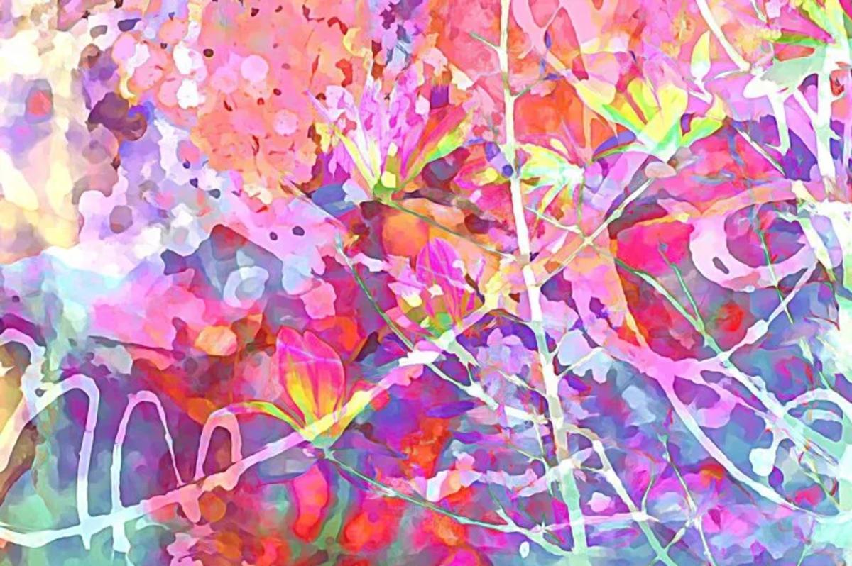 Urban Nature Ekphrastic Poem: Six Magnolias