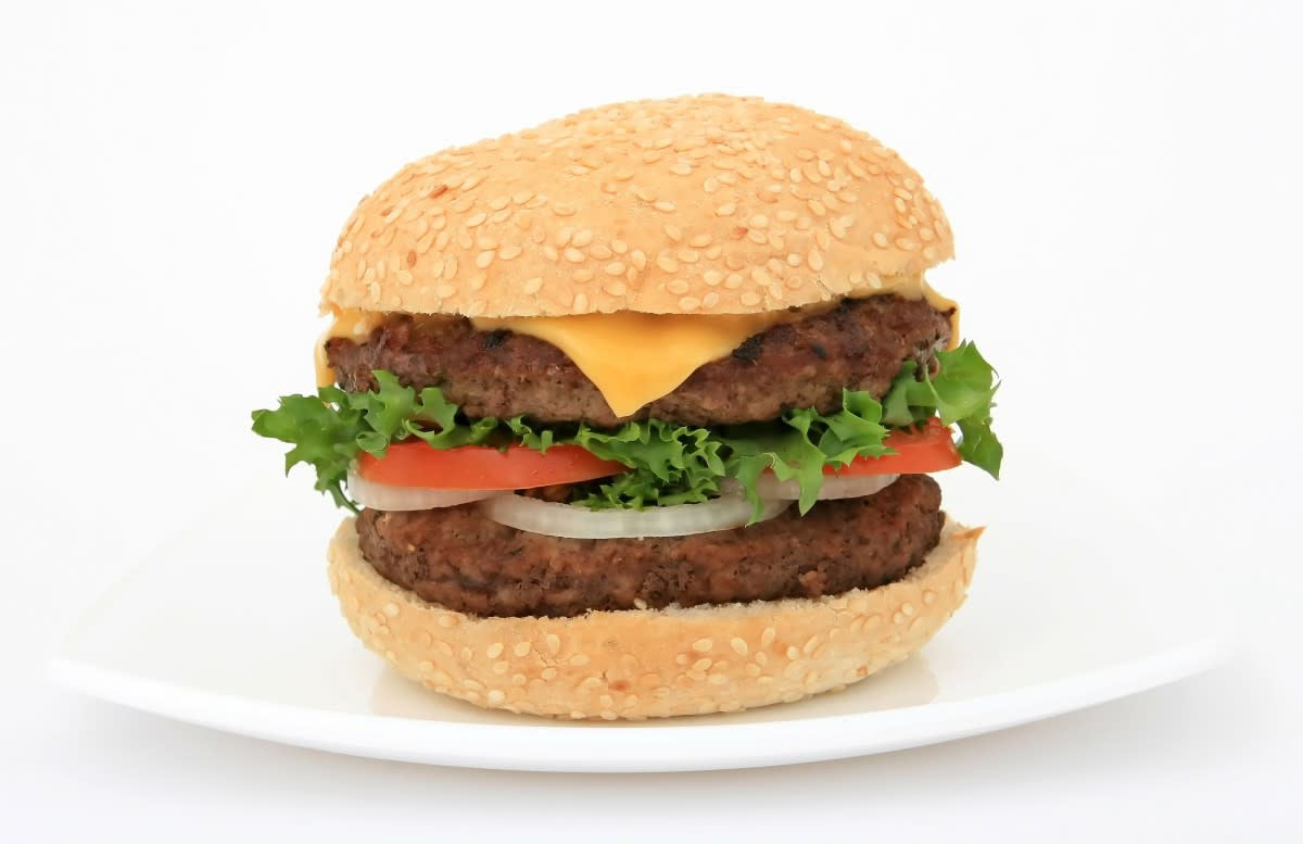 The History of the Hamburger: The Story of the World's Greatest Sandwich