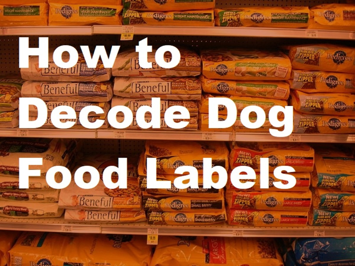 Not all dog foods are created equal. But the list of ingredients and nutrition labels can be hard to understand. Learn to read and understand these labels to make sure you're dog's food is the best for his needs