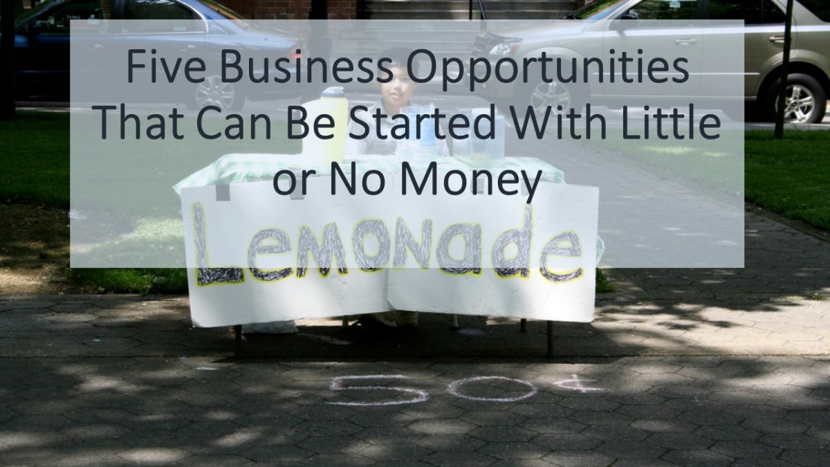 Five Business Opportunities That Can Be Started With Little or No Money