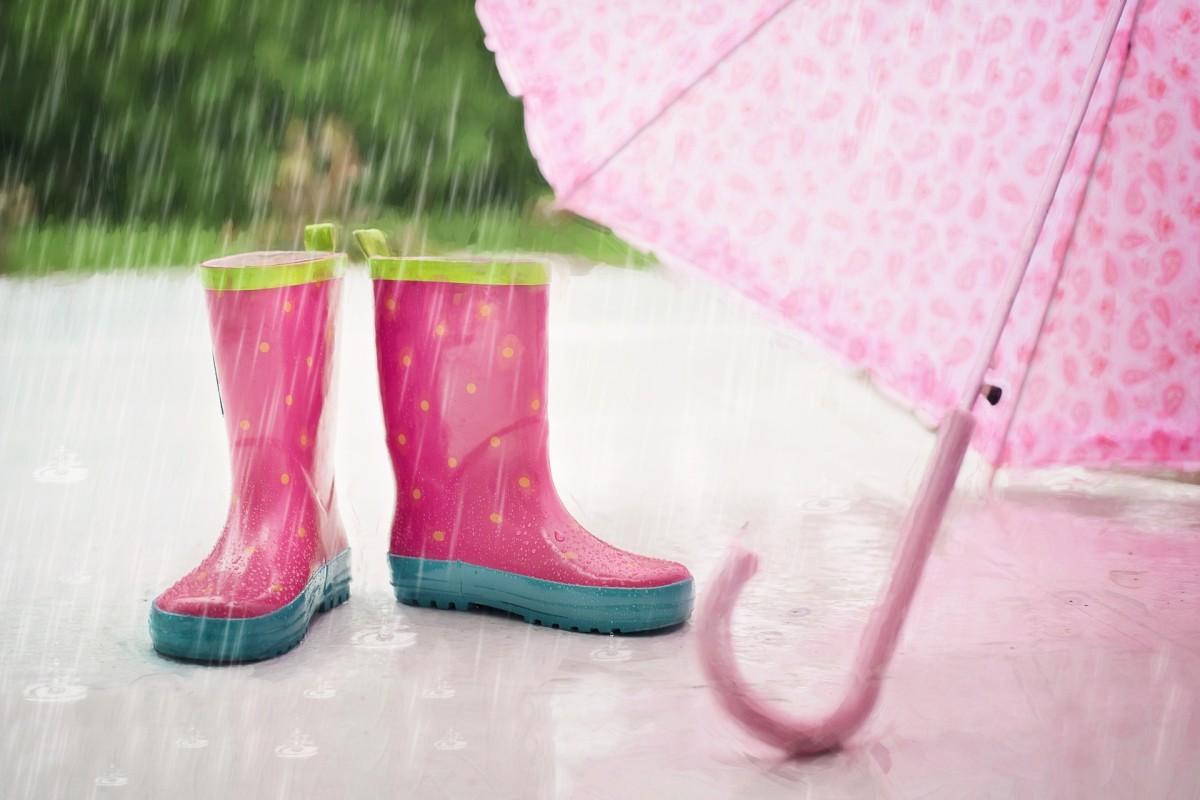 The Rain Says