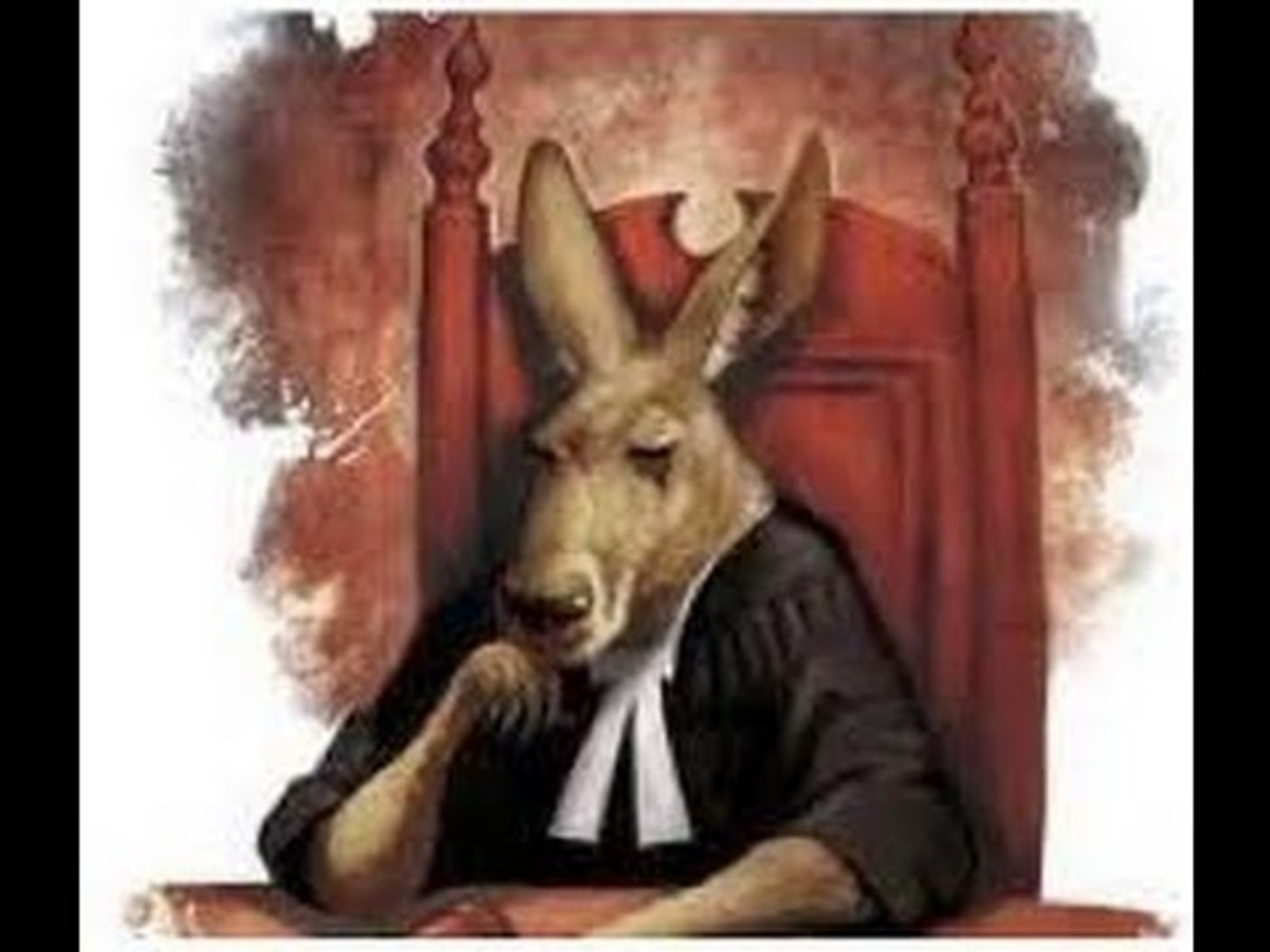 Kangaroo Court: Animal's on Trial