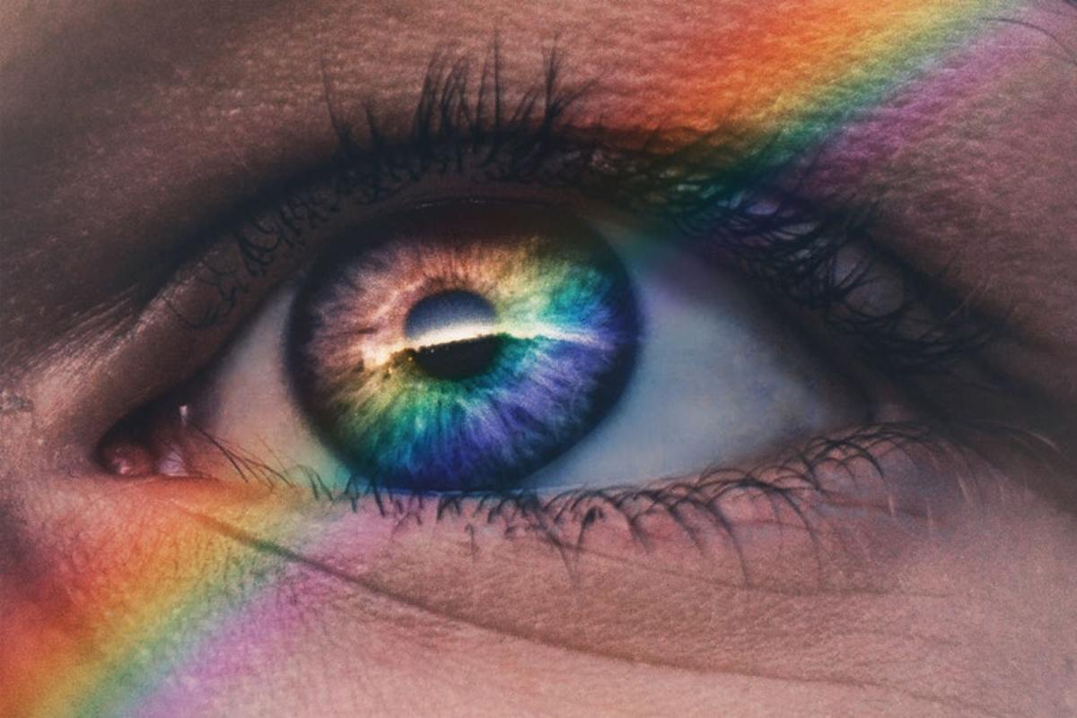 Meet the Women Who See the Colours You Can't