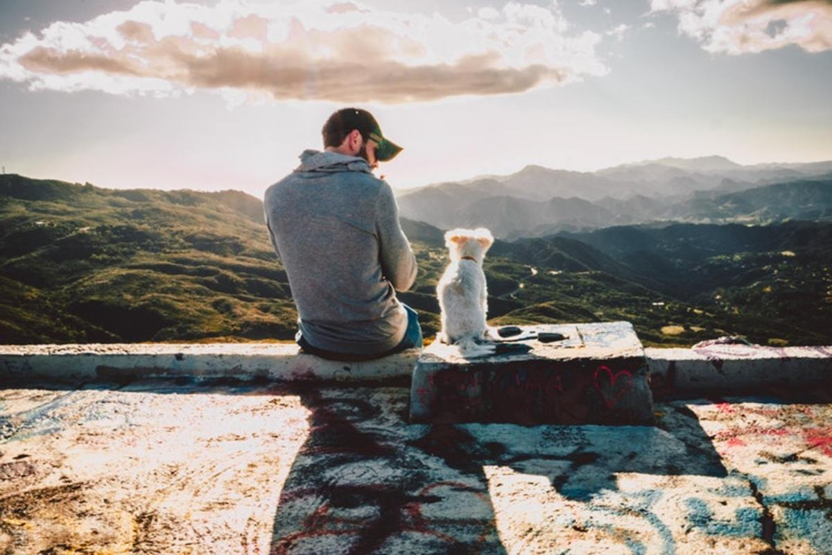 How Mindfulness With Dogs Can Be Emotionally Healing