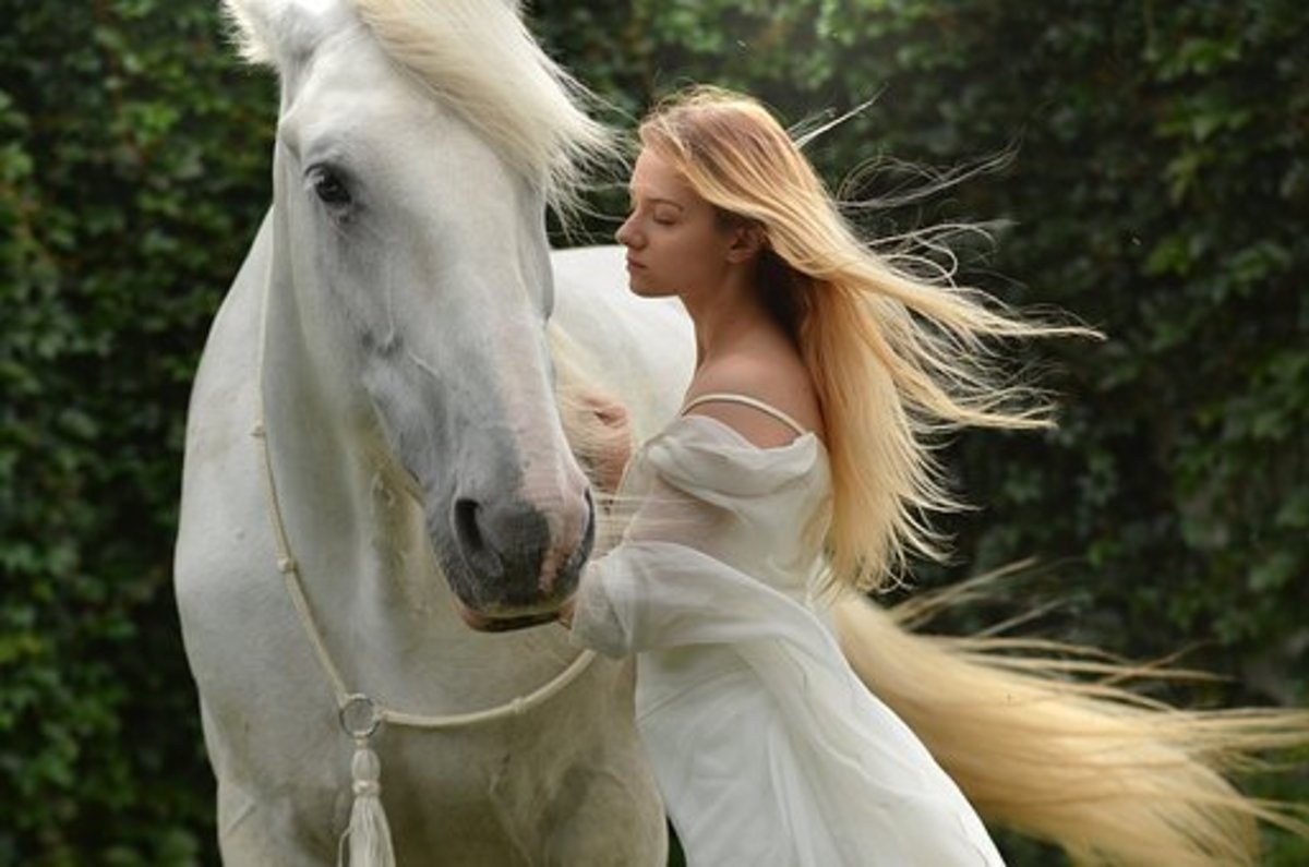 A girl whispers a Chinese name into her horse's ear.