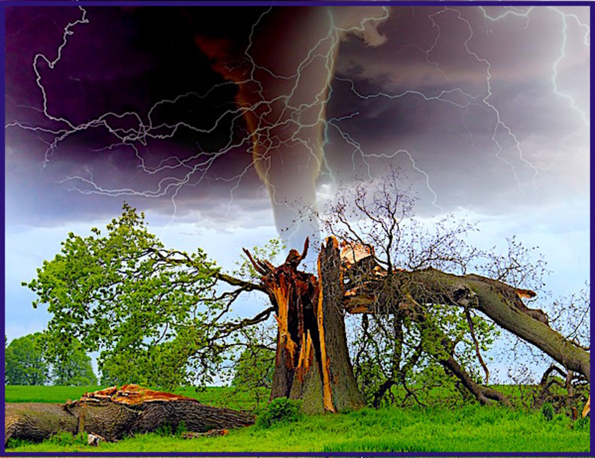 Hurricanes can spawn dozens of powerful tornadoes, and even create massive electrical storms under certain conditions.