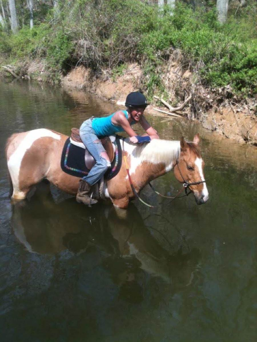Chaps is an example of the perfect beginner lesson horse. As you can see, I even enjoy riding him on trails from time to time. But to really get good, you have to move on to harder horses! (Do as I say, not as I do; don't ride with a broken wrist!)