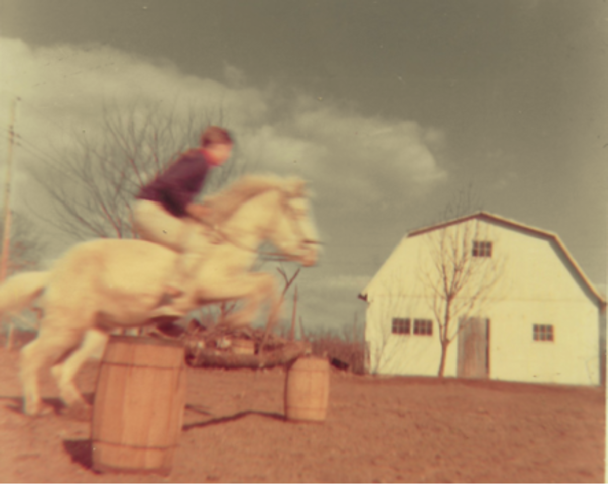 Neighbor riding one of our horses beside the barn