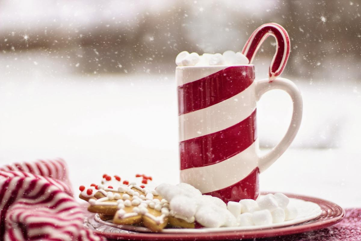 How can we turn down a decadent mug of hot cocoa with marshmallows??