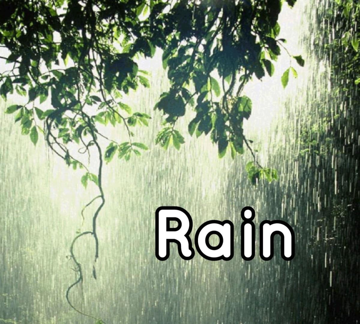 Rain, the Poem