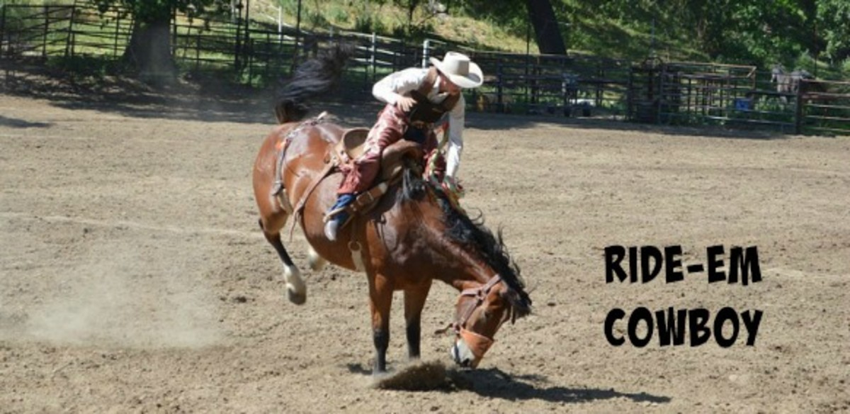 "When life treats you like it is a bucking bronco, ""Ride 'em Cowboy"" is a good motto."