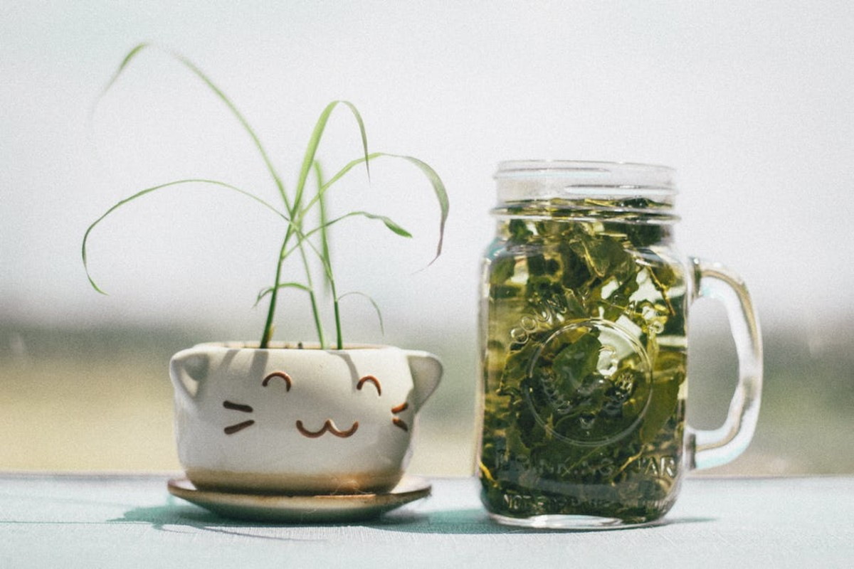 Green tea is a heart-healthy beverage choice.