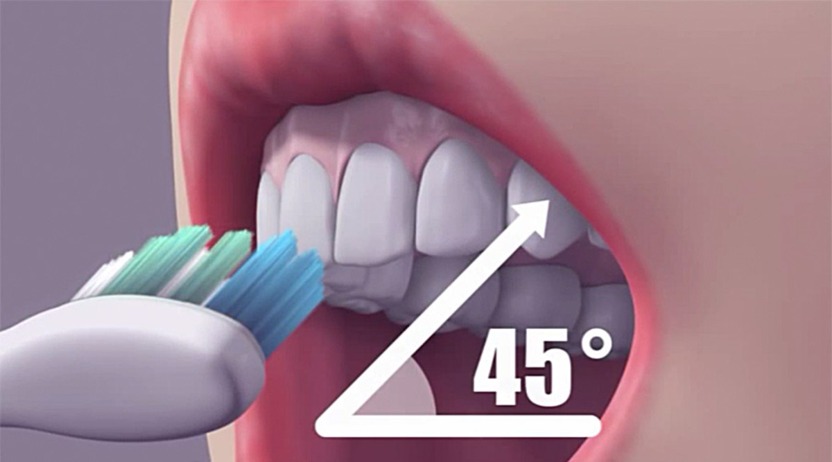 Always angle the bristles into the gum line at a 45 degree angle