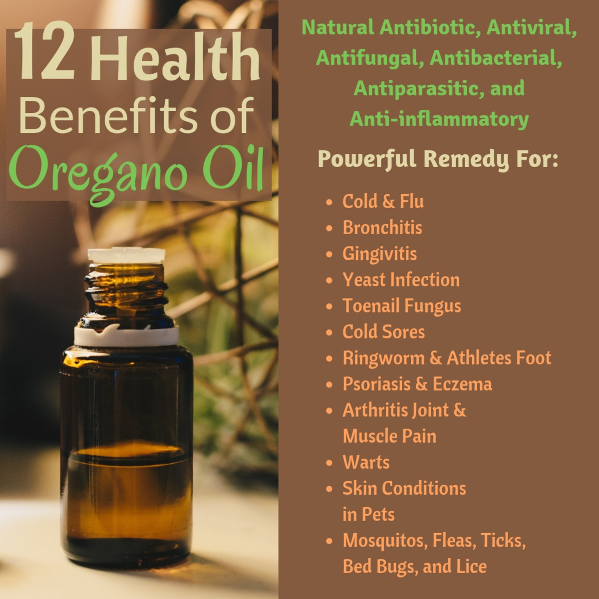 There are a surprising number of uses for Oregano Oil!