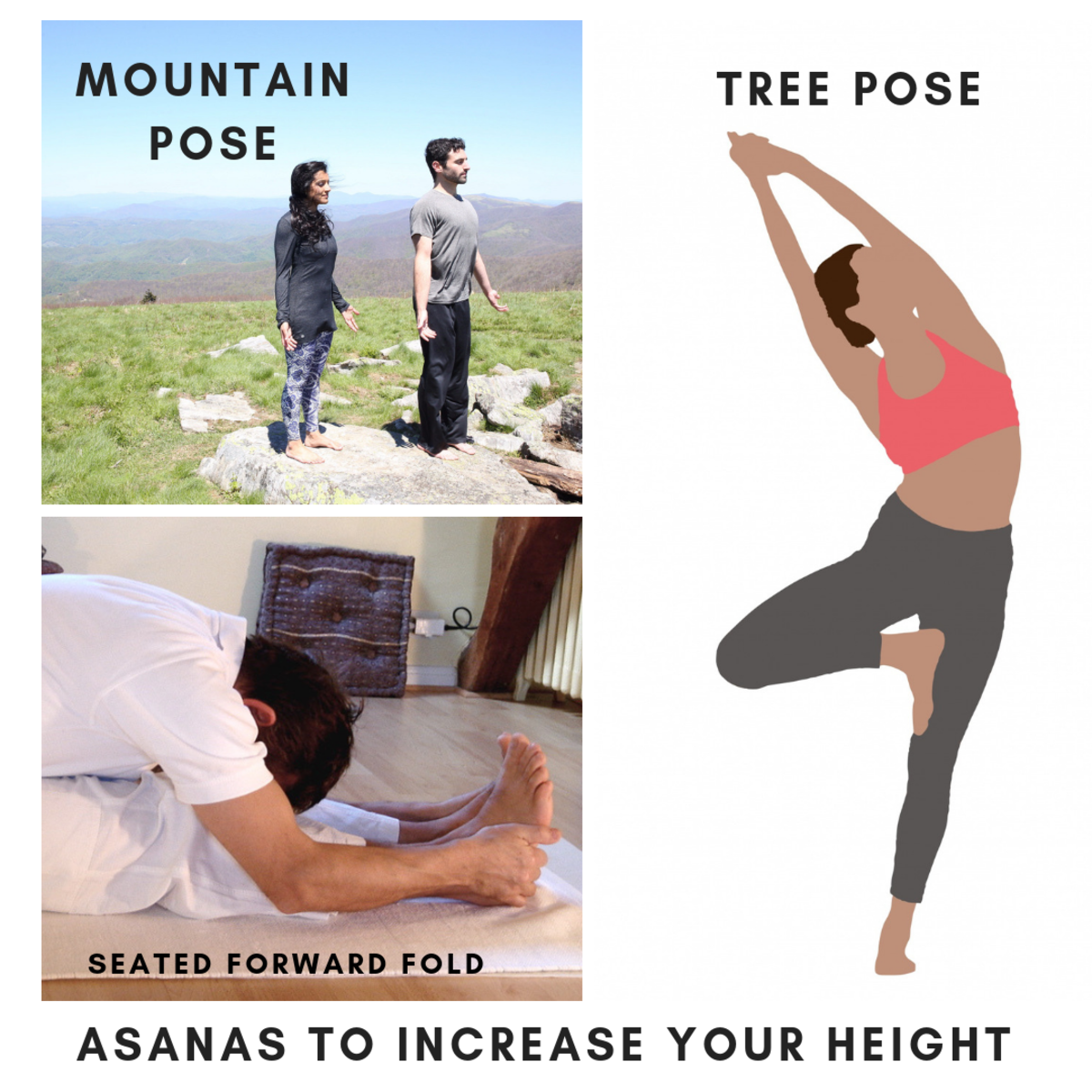Practicing these asanas daily may help to extend your overall body length.
