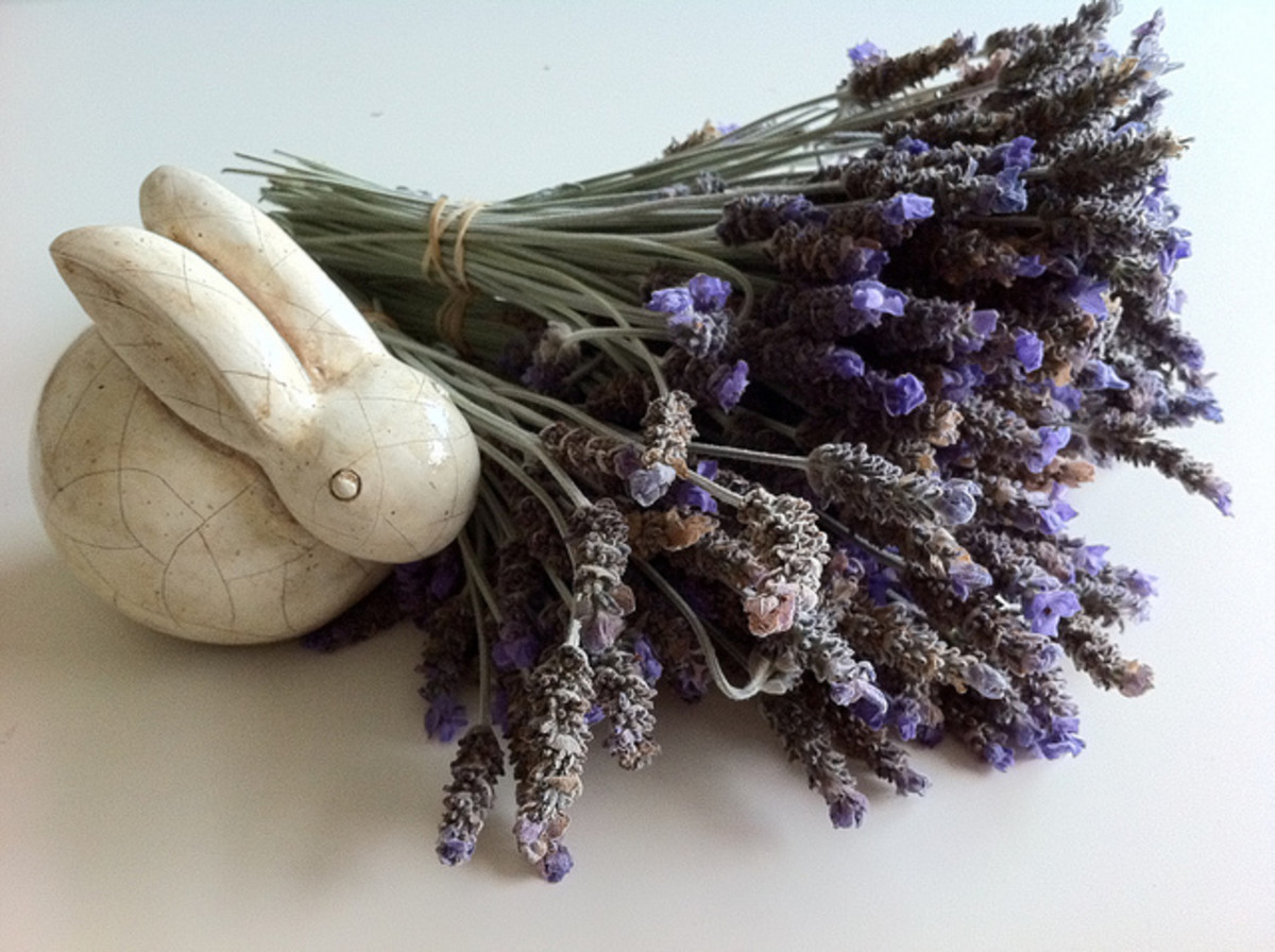 A dried bundle of lavender will create a calming effect while showering or bathing.