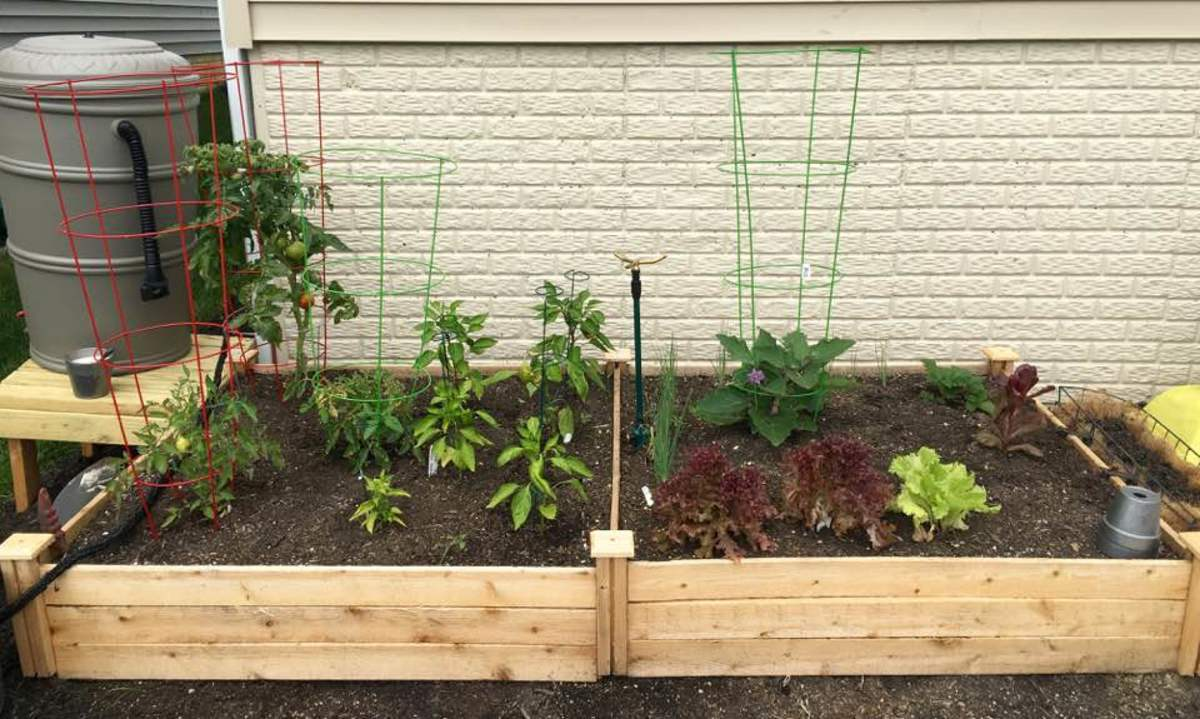 Raised bed garden from Amazon.