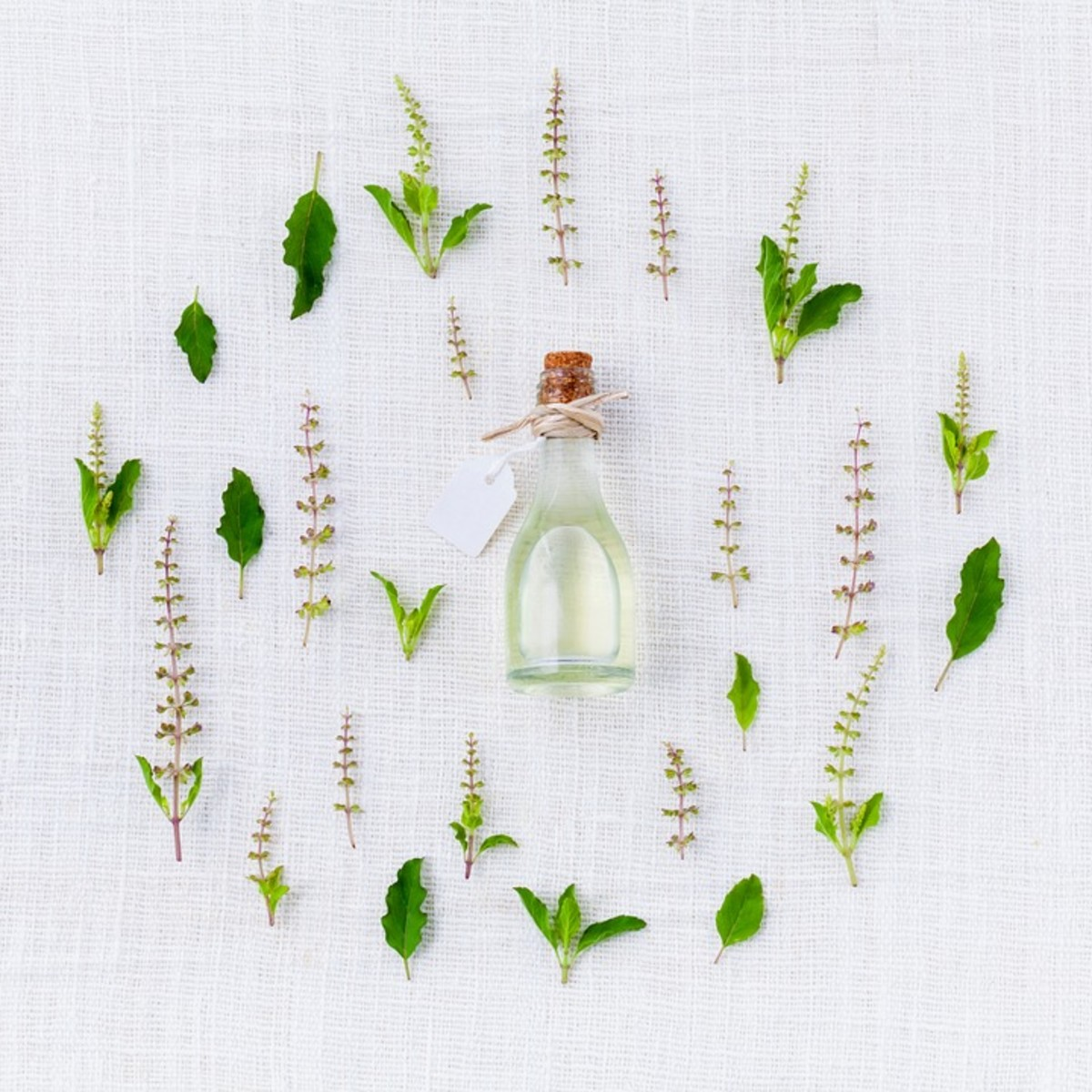 Essential Oil Tips,Tricks and Basic Blends