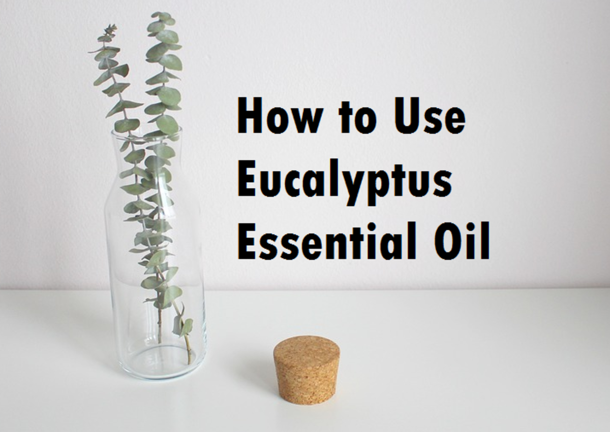 How to Use Eucalyptus Essential Oil