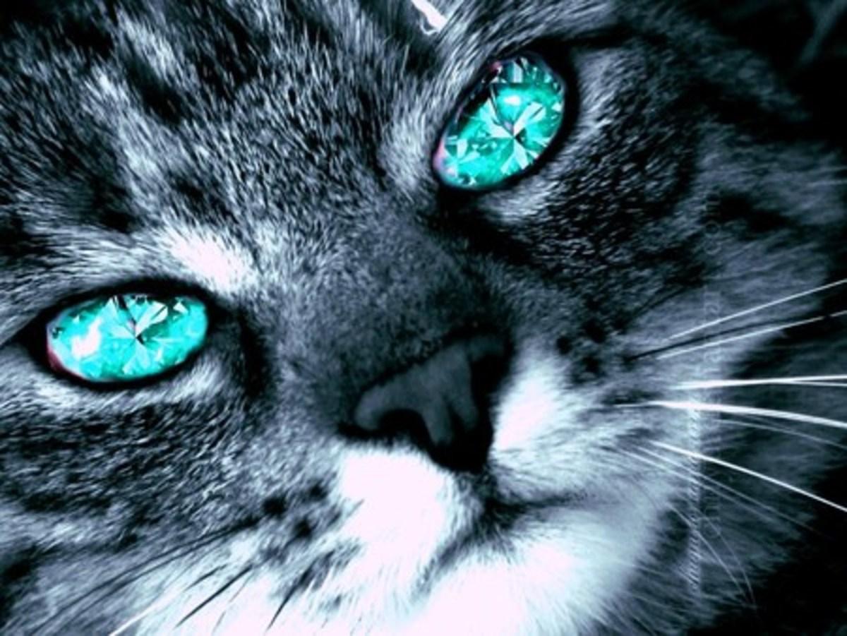 diamonds-real-friends_roshena