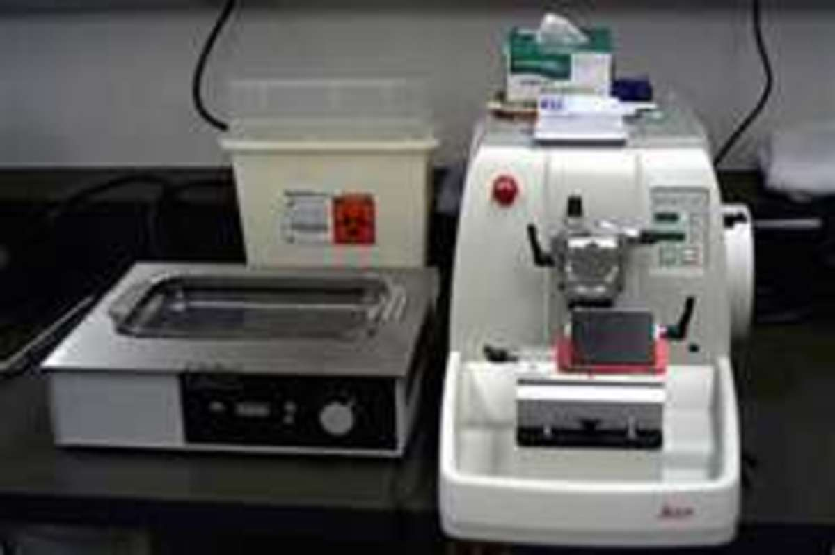 Microtome with work area.