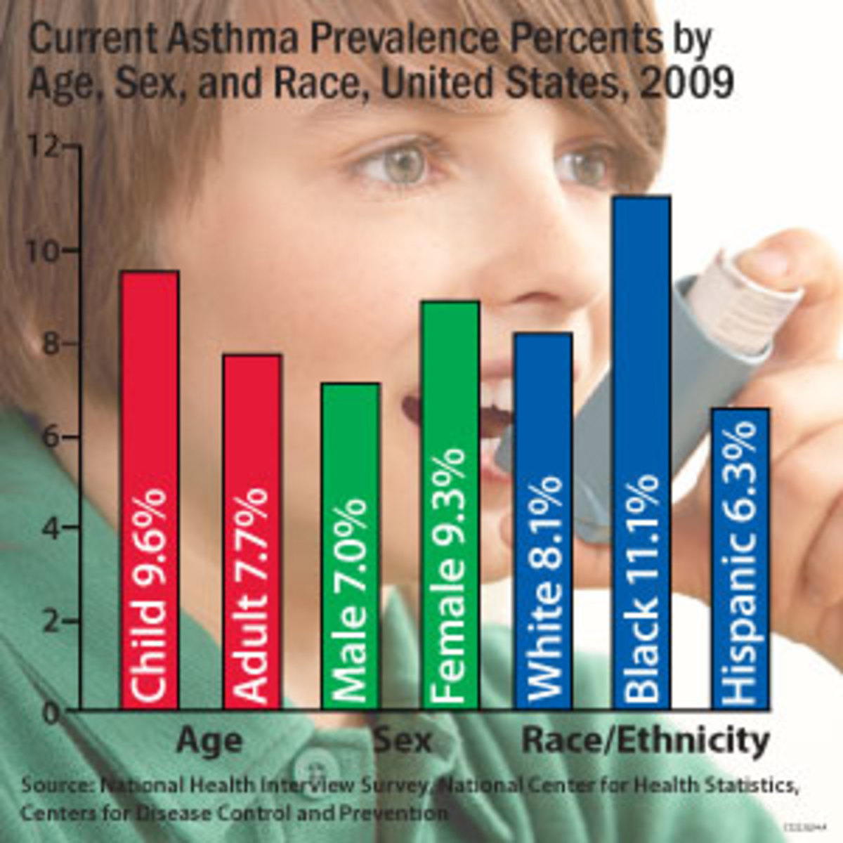 Allergy and Asthma Triggers