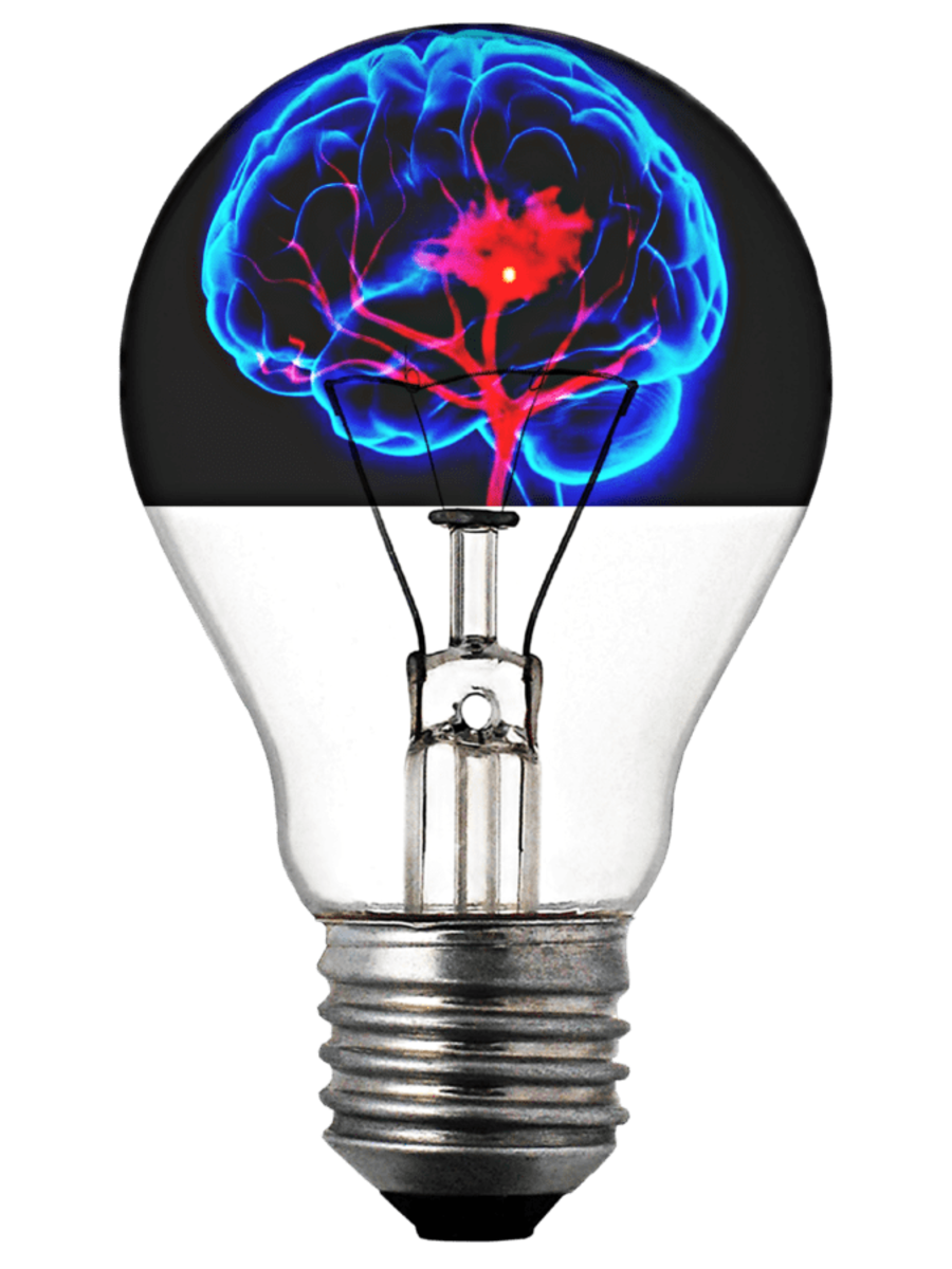 Electricity is Life: Electrical activity in the brain indicates life.