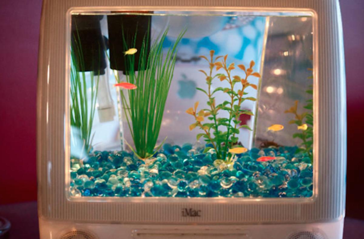 Future Computer Aquarium