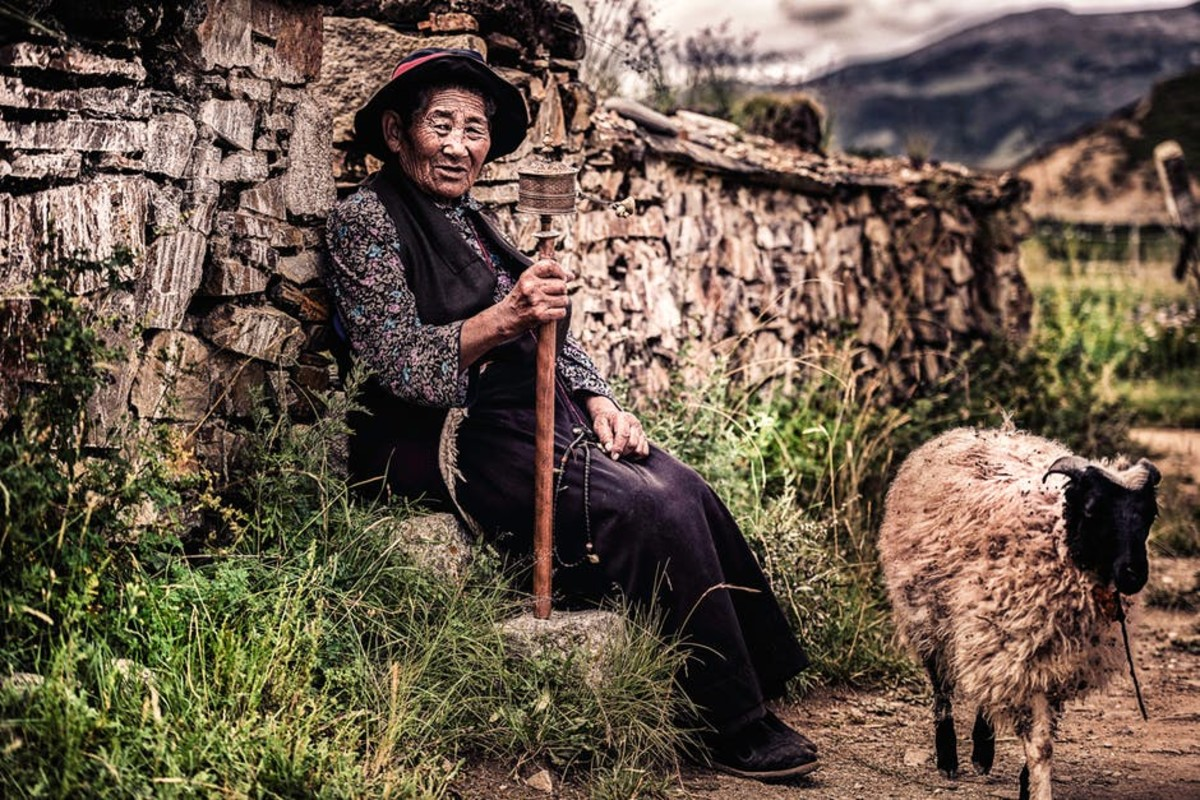 Shepherds are great as people who love to live lives all by themselves.