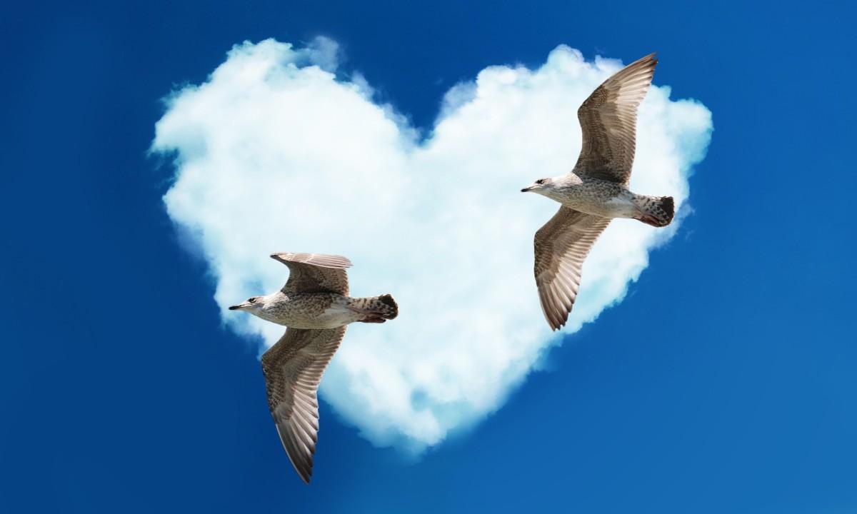 My Vagabond Heart, a Poem