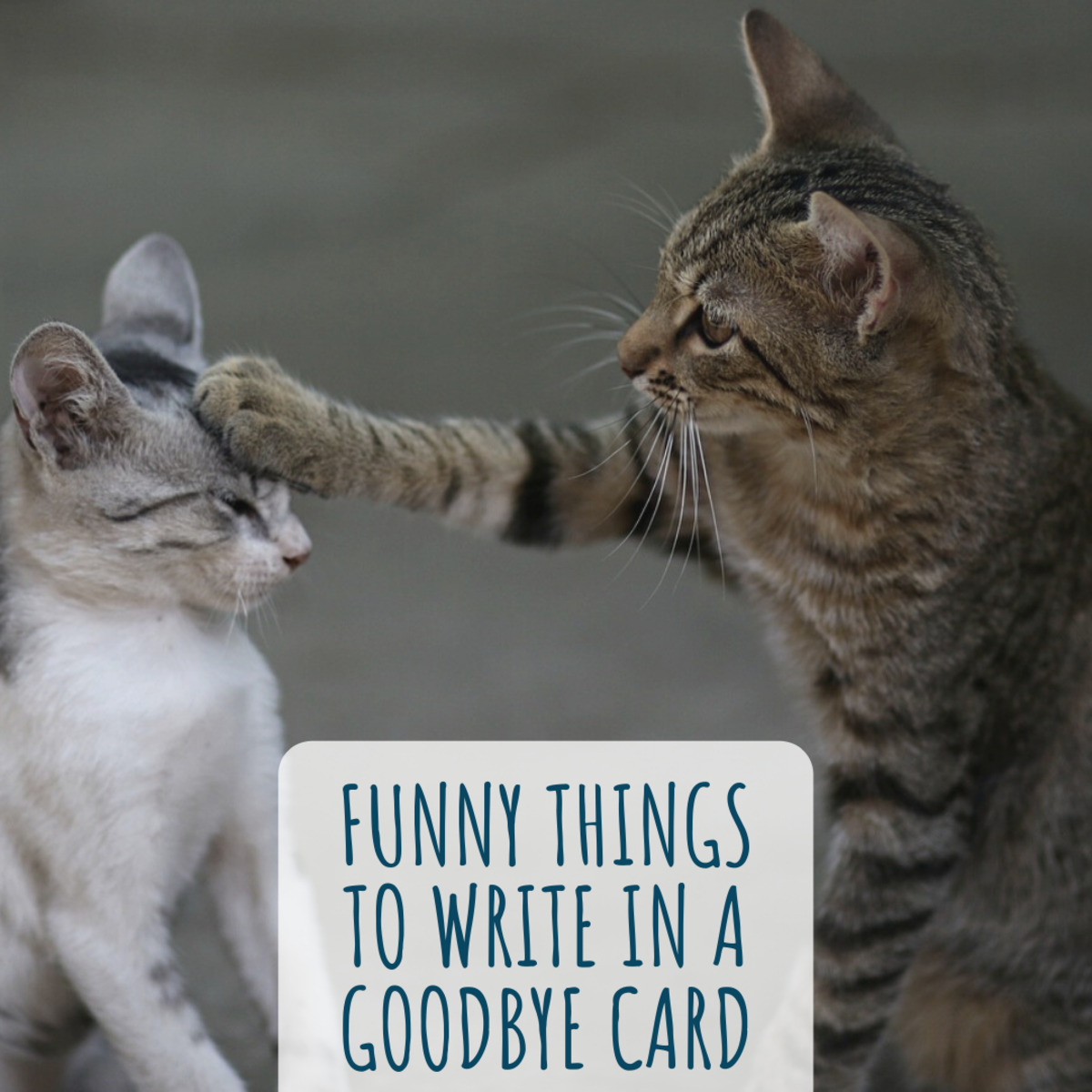 Here are some funny things to write in a goodbye card for coworkers or a friend or loved one moving