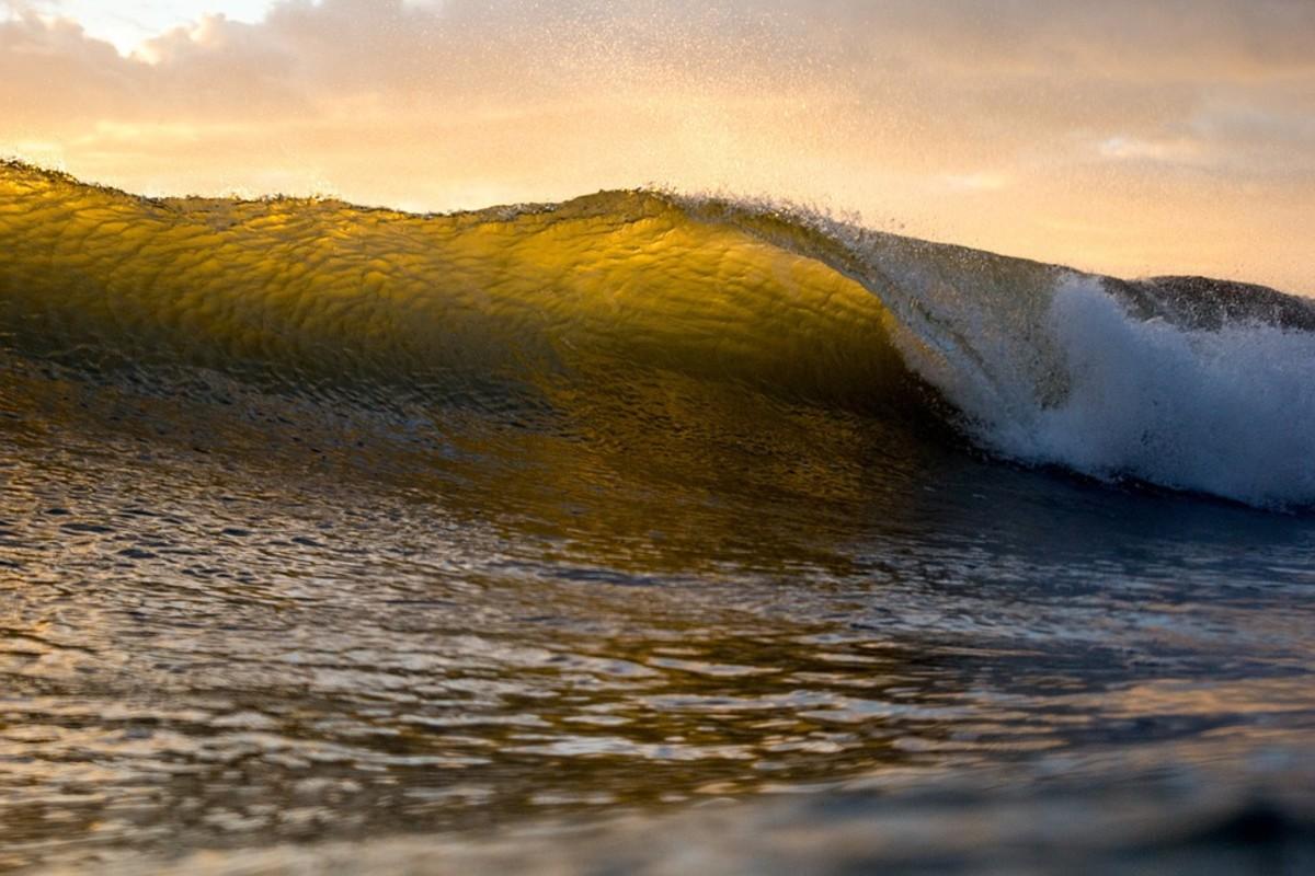 Love, Death, and Vengeful Tidal Waves