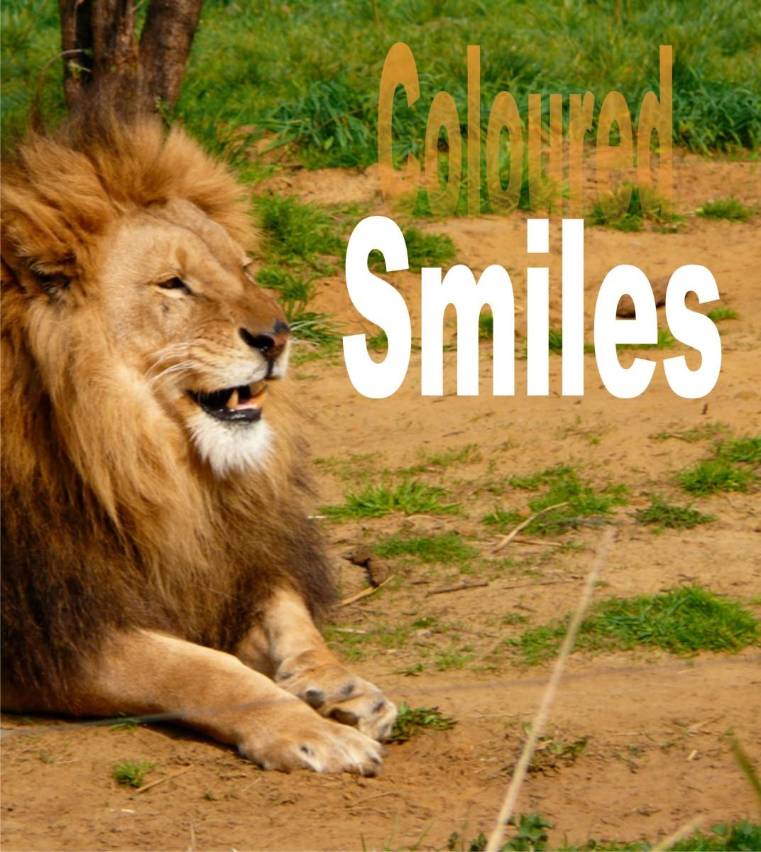 Coloured Smiles: The Deceitful Friend