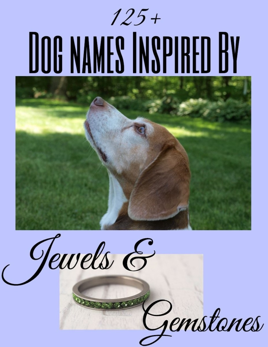 The ultimate list of over 125 dog names inspired by jewels and gemstones. Included are ideas based on precious and semiprecious stones, colors, jewelry, and even birthstones.  If bling is your thing, then your new pup deserves a gem of a name.
