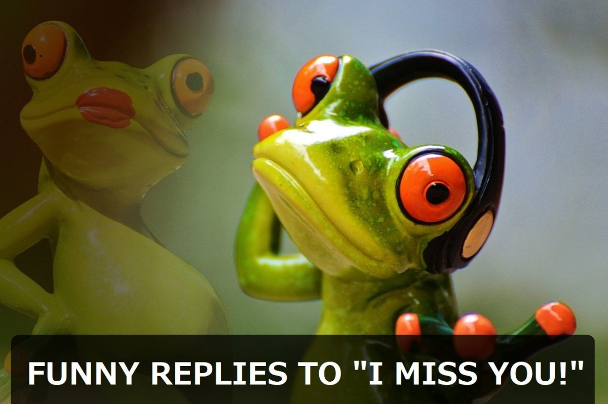 "100+ Funny and Sarcastic Replies to ""I Miss You!"""