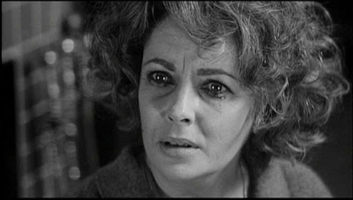 "Elizabeth Taylor as Martha in the film version of ""Who's Afraid of Virginia Woolf?"" (1966)"