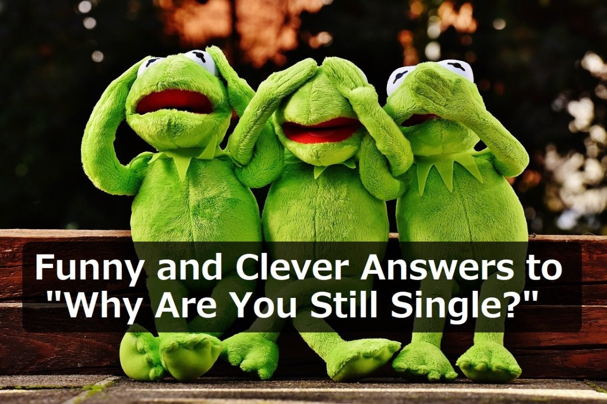 "100+ Funny and Clever Answers to ""Why Are You Still Single?"""