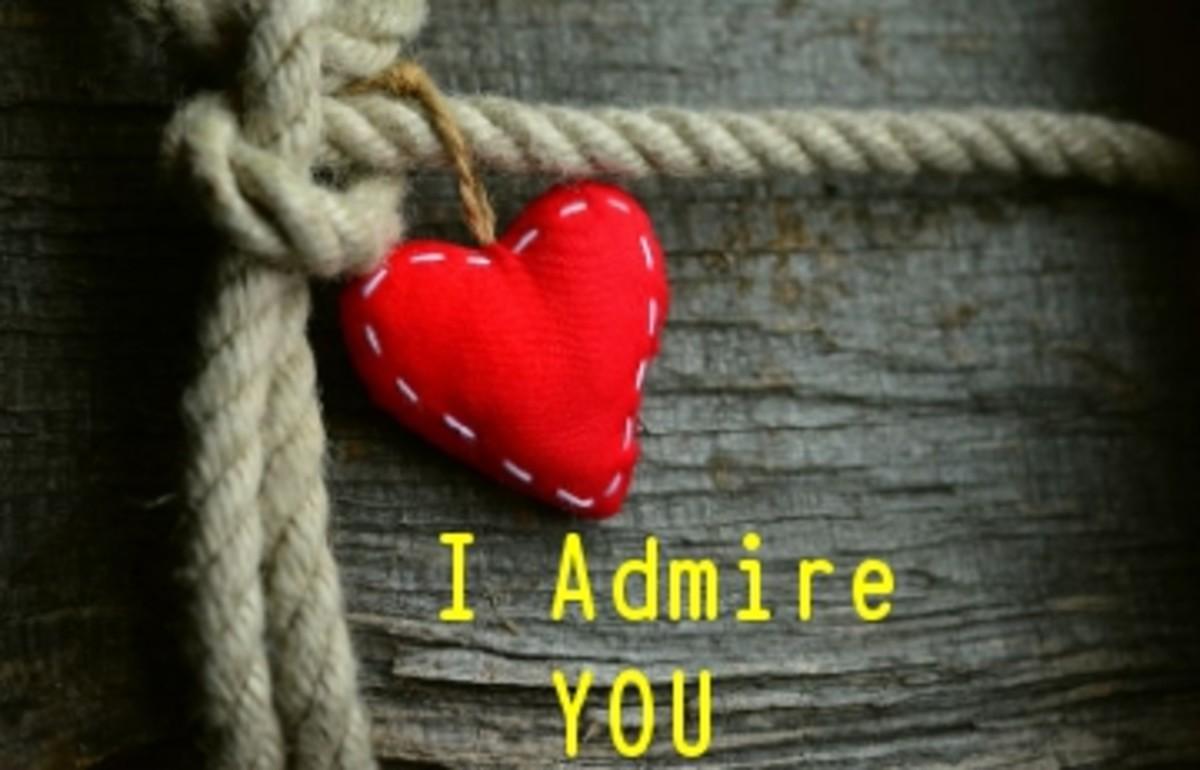 Poem:  I Admire You