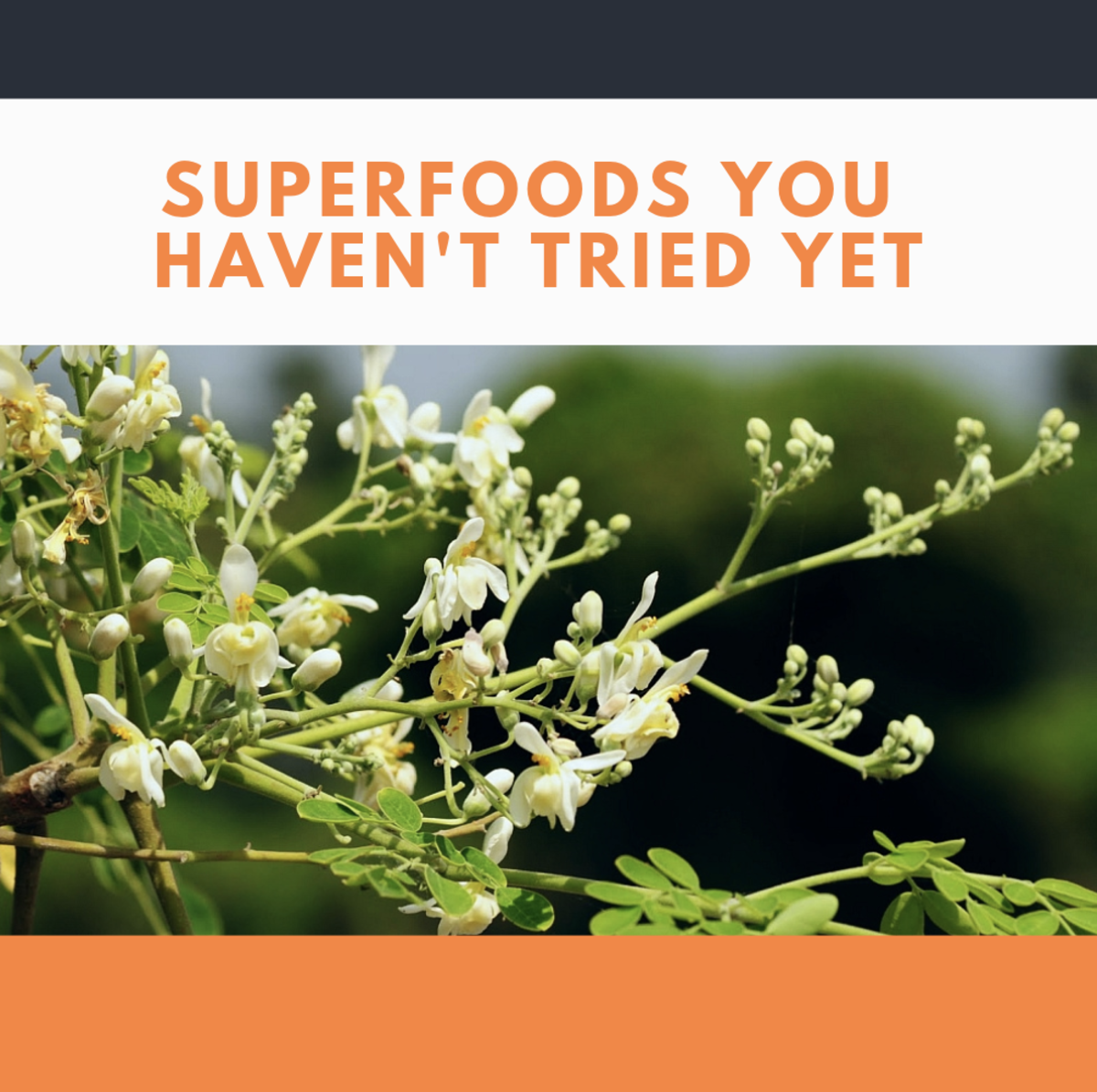 5 Superfoods You Haven't Tried Yet