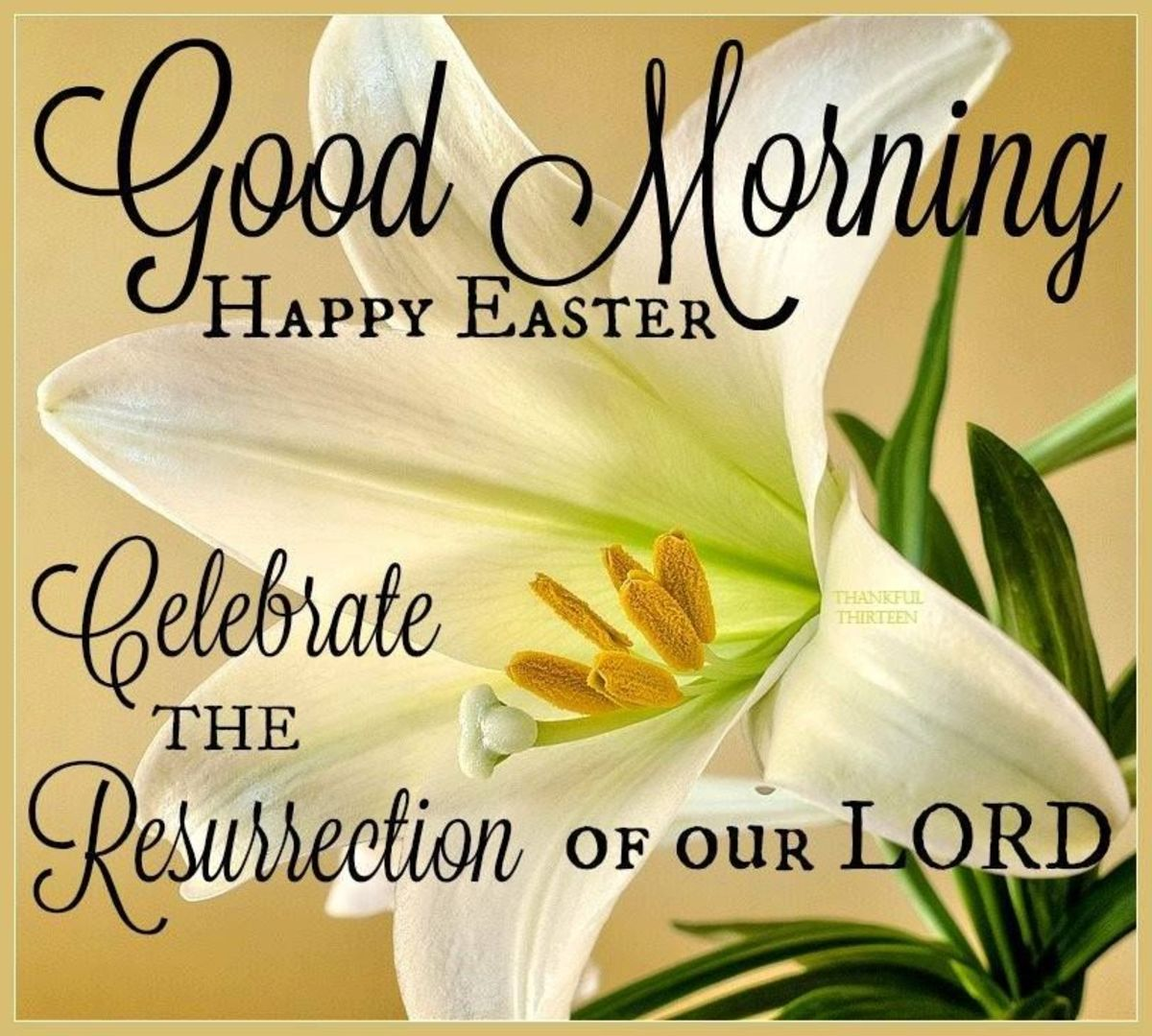Good Morning Happy Easter.