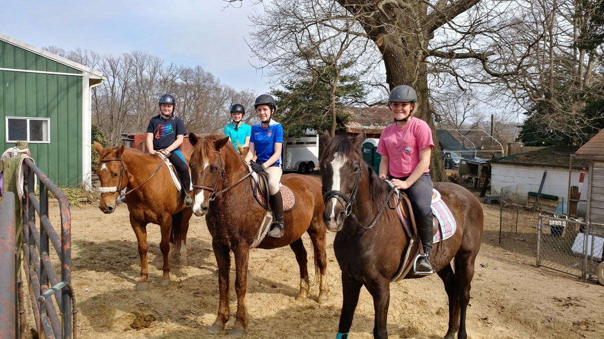 20 Questions to Ask When Shopping for Summer Horseback Riding Camp