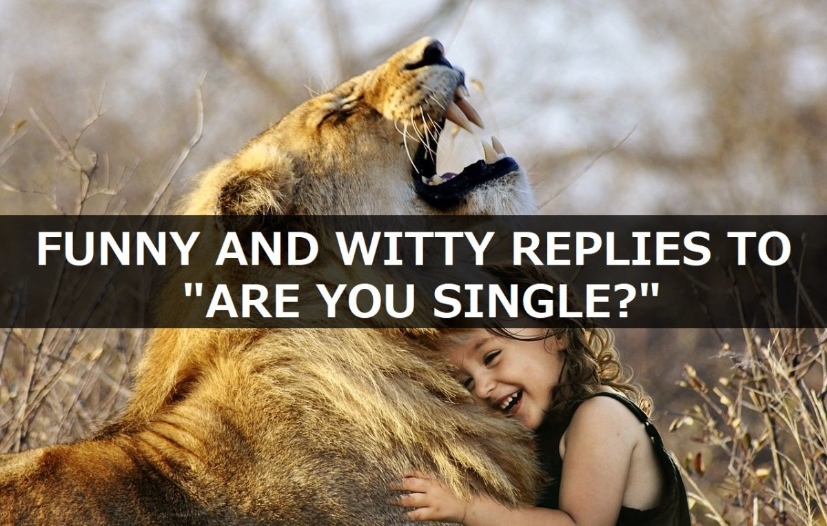 "Funny and Witty Replies to ""Are You Single?"""